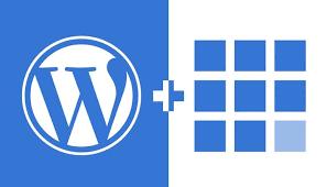 Wordpress and bluehost | Do I need WordPress and bluehost