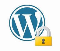 Wordpress and bluehost