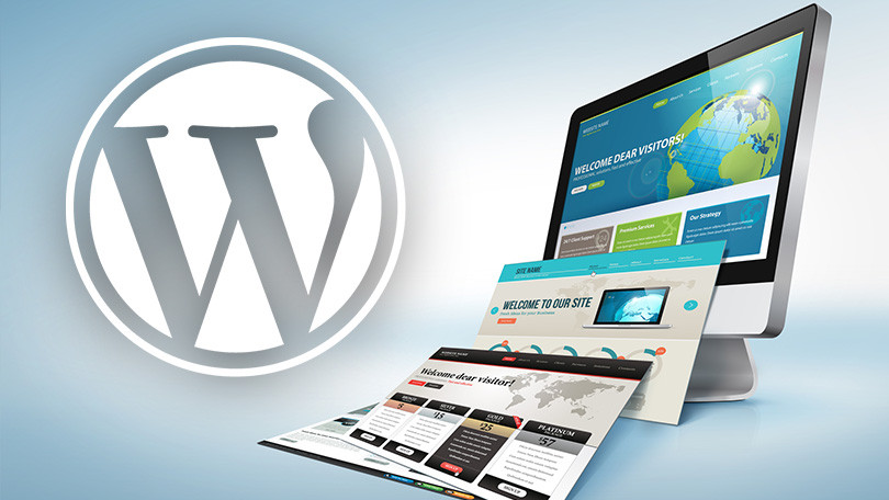 WordPress freelancer