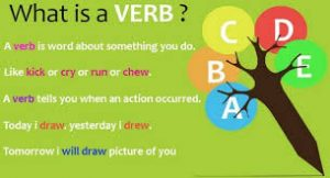 What is verb?
