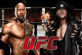 Which WWE Superstars Could Handle the UFC?