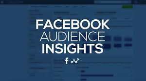 Facebook insight audience