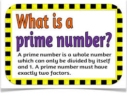 What is prime number?