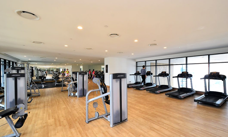 Everything there is to know about gyms