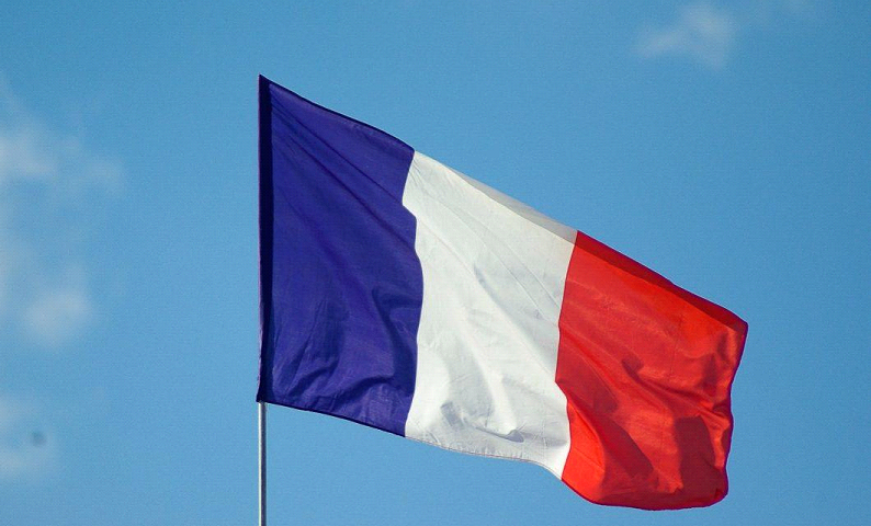 How can I learn the most technical and professional French?